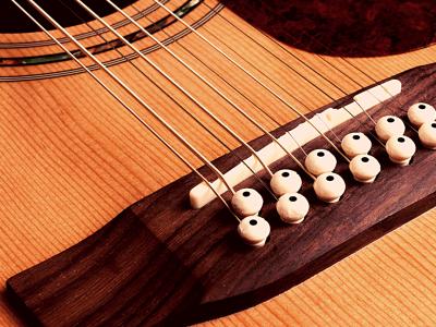 Takamine 12 String